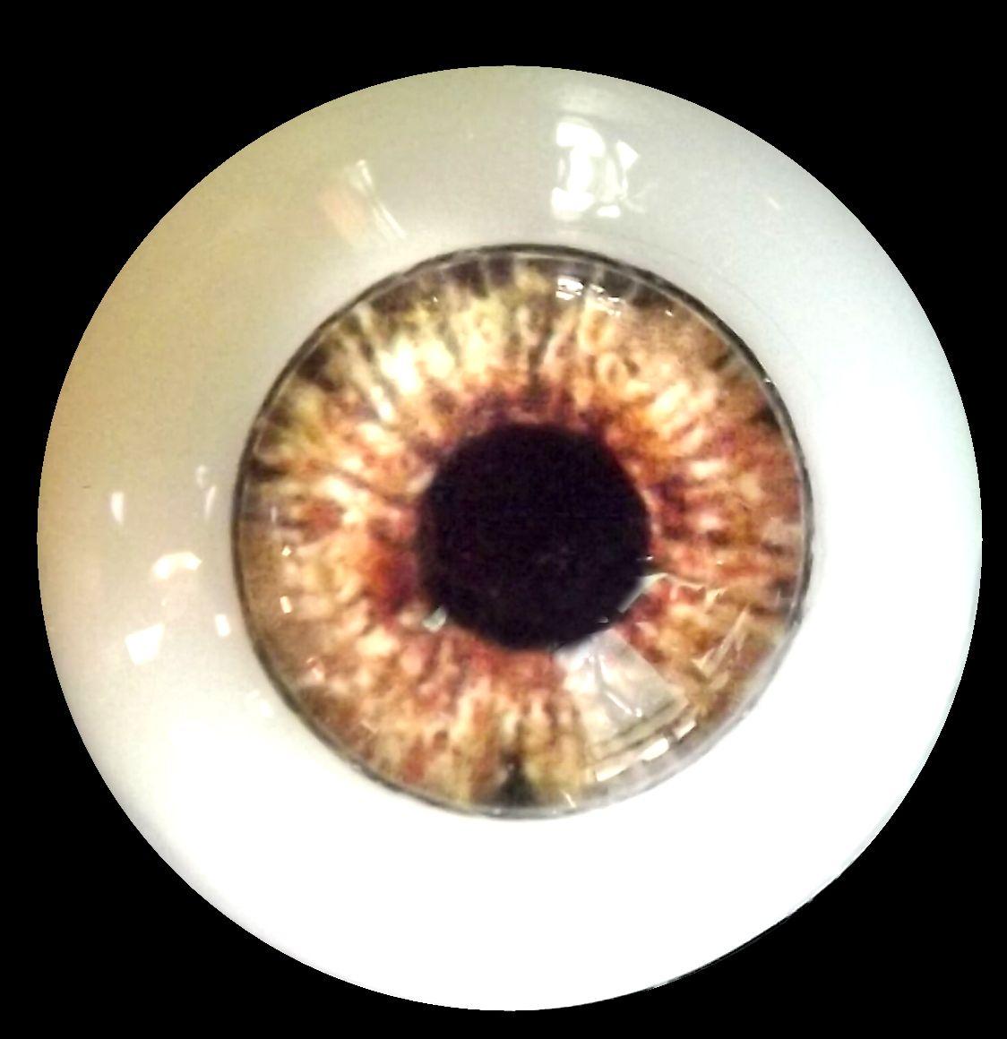 Standard eye colors by masterpiece eyes eye nvjuhfo Gallery